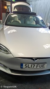 Super-fast electric vegan Tesla