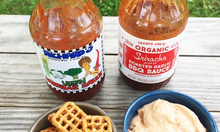 6/20/15- Easy Vegan Party Dip + BBQ Sauce Review + Quote