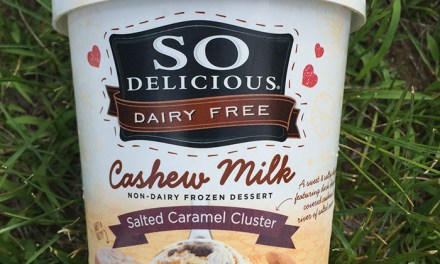 So Delicious Salted Caramel Cluster Cashew Milk Ice Cream