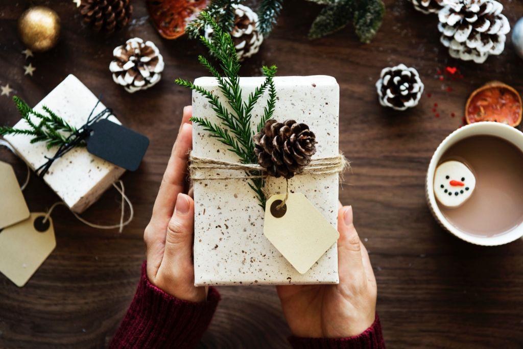 Vegan Christmas Gift Image