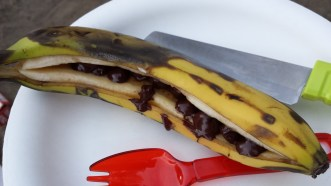 Grilled banana with chocolate chips (added nut butter post picture)