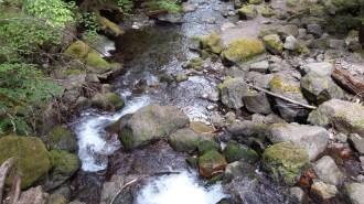 Laughing Creek hike 5