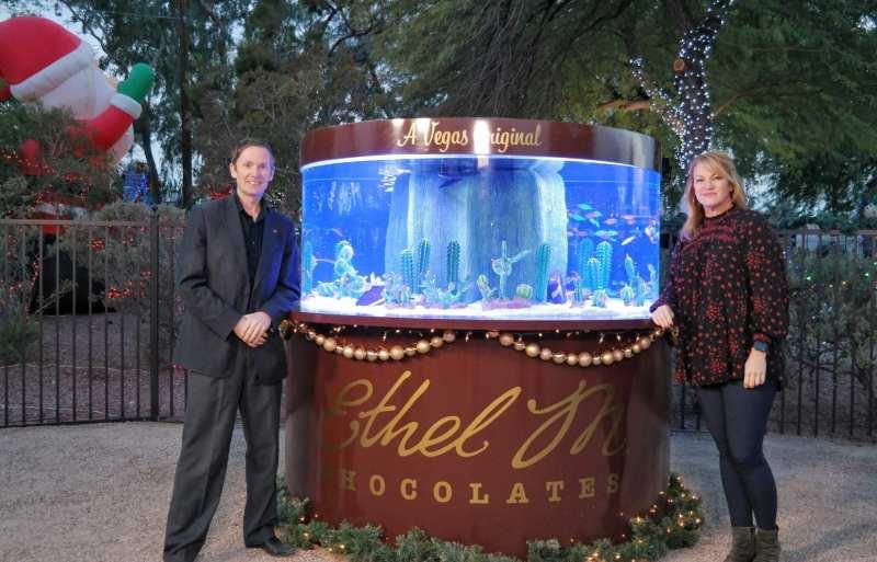 Tanked Aquarium at Ethel M Chocolates