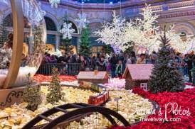 Winter Decorations at Bellagio Gardens and Conservatory