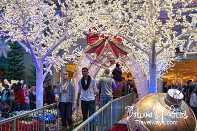 Passage to the winter gardens at Bellagio
