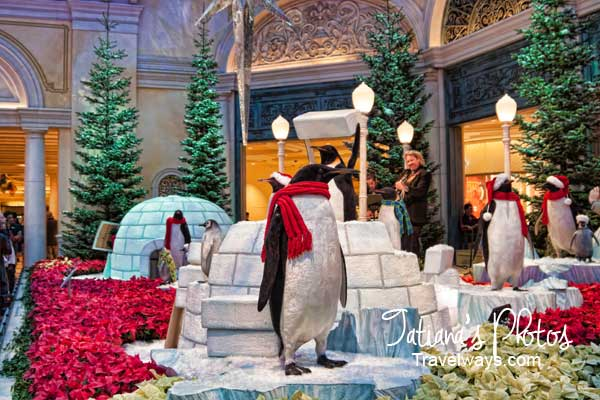 Penguins and Performers at Bellagio Winter Garden