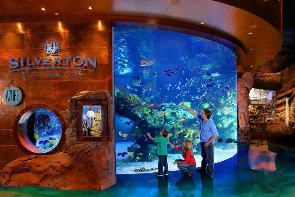 Silverton Aquarium - Family Activities in Vegas