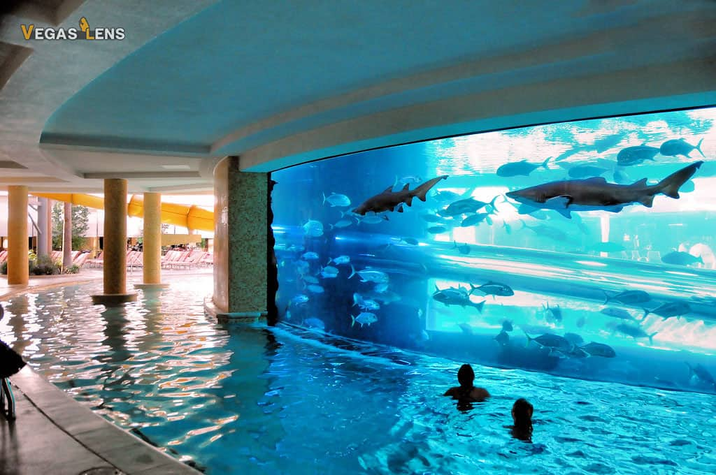 Golden Nugget - Family friendly pools in Las Vegas