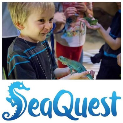 SeaQuest logo and small boy holding a green lizard in his hand