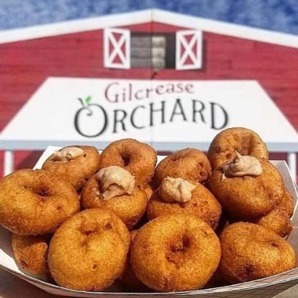 Gilcrease Orchard red barn in background with apple cider donuts