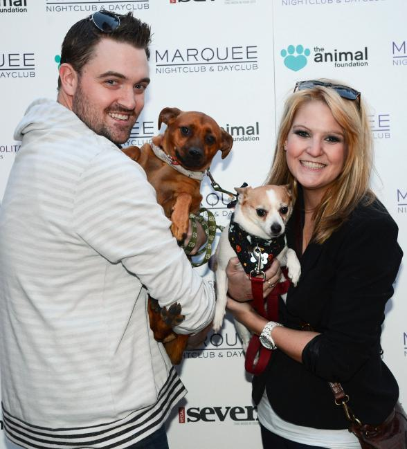 Barquee guests and pets on green carpet