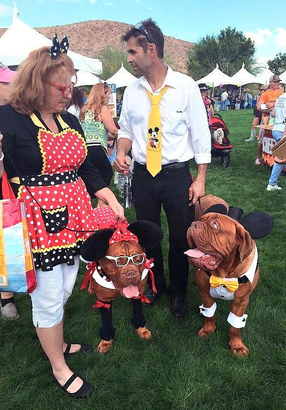 Free Family, Fur & Fun Festival for Rescued Animals on Oct. 12 at Mountain's Edge
