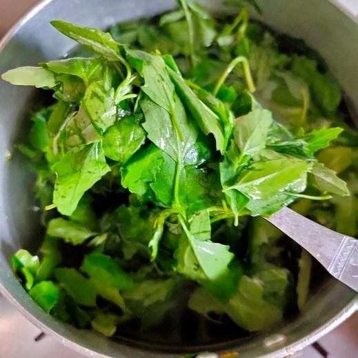 bathua leaves fresh