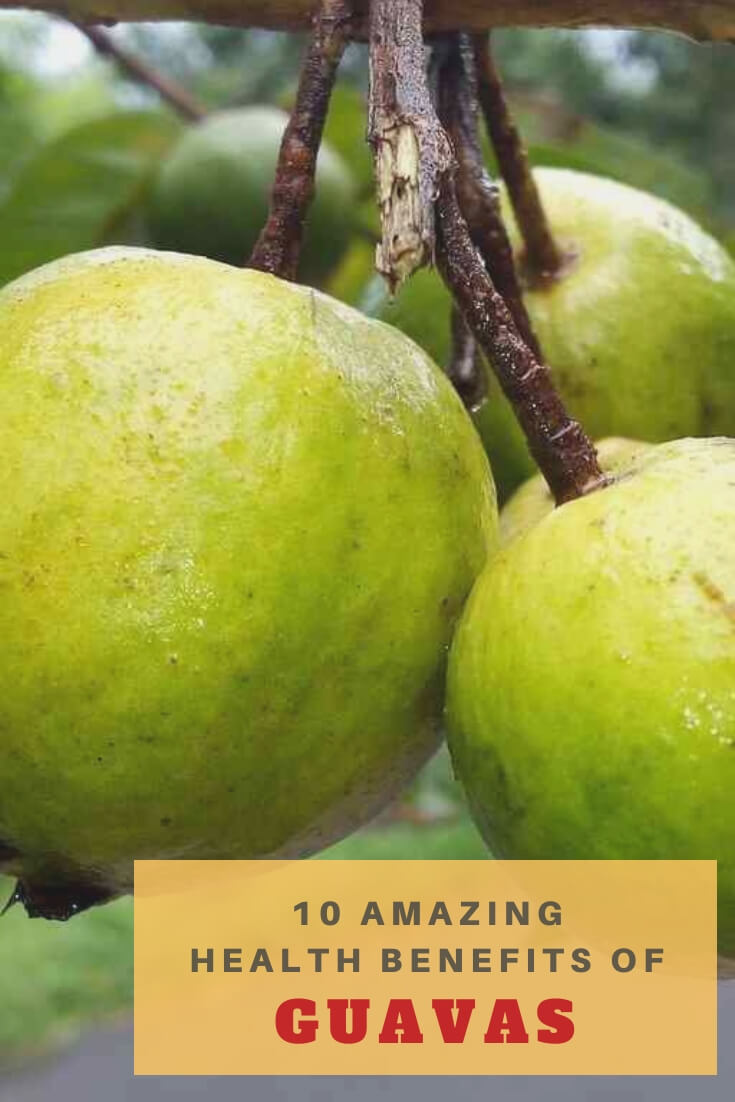 Read about amazing health benefits of guavas which have high nutritional value & provide essential vitamins, antioxidants, minerals & fiber.