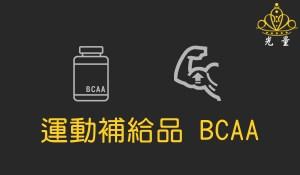 運動補給品 BCAA