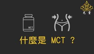 什麼是MCT?