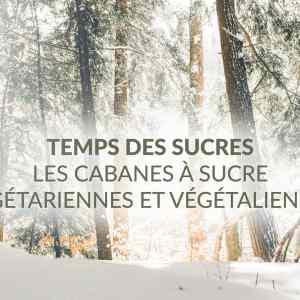 Temps des Sucres : cabanes à sucre végétariennes et végétaliennes