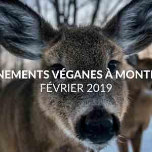 Événements véganes à Montréal en février 2019