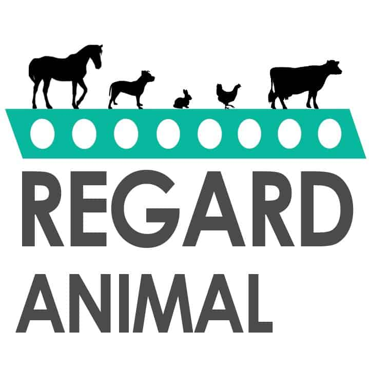 Regard Animal