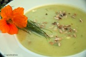 Kartoffel - Fenchel Suppe