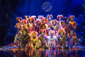 CATS The Musical comes to Sydney