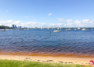 A tasty winter in Perth