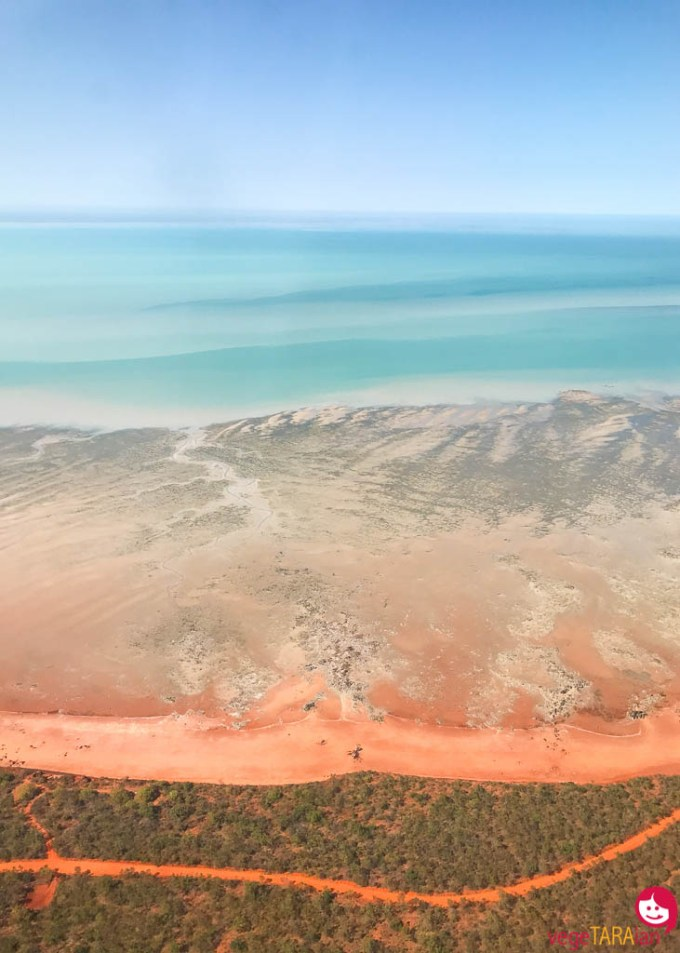 Broome-from-plane