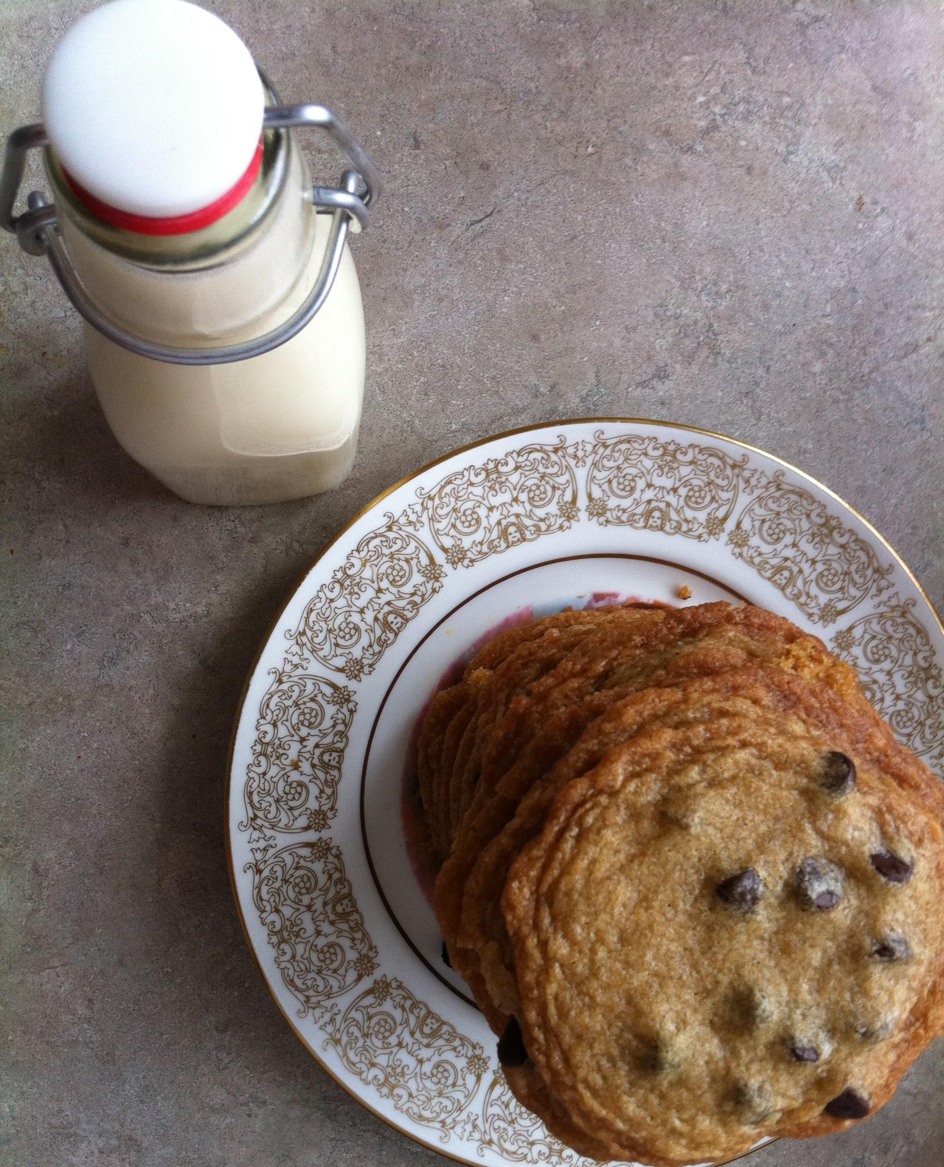 DIY Soy Milk with Vegan Chocolate Chip Cookies