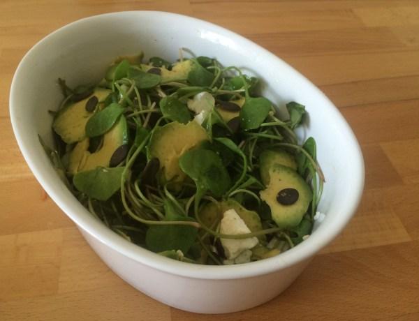 Postelein Salat
