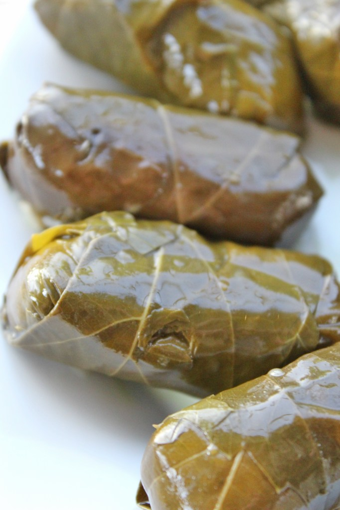 Plum Dolmas are compact little party appetizers. Sweet, nutty, a little spicy, and very filling.