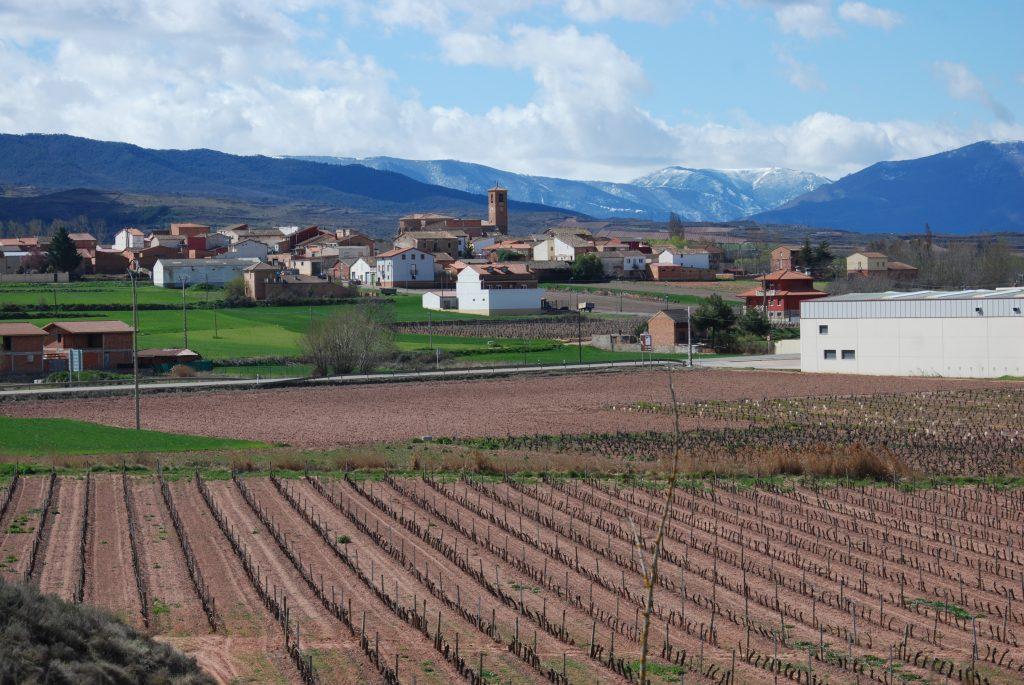 Two Weeks on the Camino de Santiago