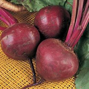 Beetroot salad with horseradish and pine nuts