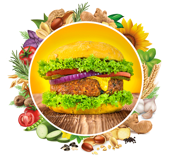 Hamburguesa vegetal Burggins
