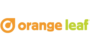 Vegan Options at Orange Leaf