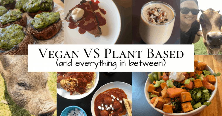 Vegan vs Plant Based (and everything in between)