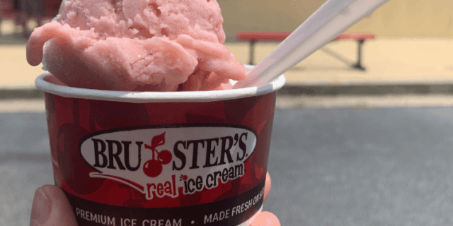 Bruster's Strawberry Banana Ice Cream