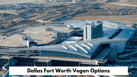 Dallas Fort Worth Airport Vegan Options