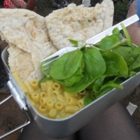 How to Survive a UK Music Festival as a Vegetarian