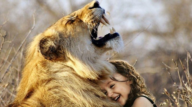 A nova 'lista pet' e a comercialização de animais selvagens