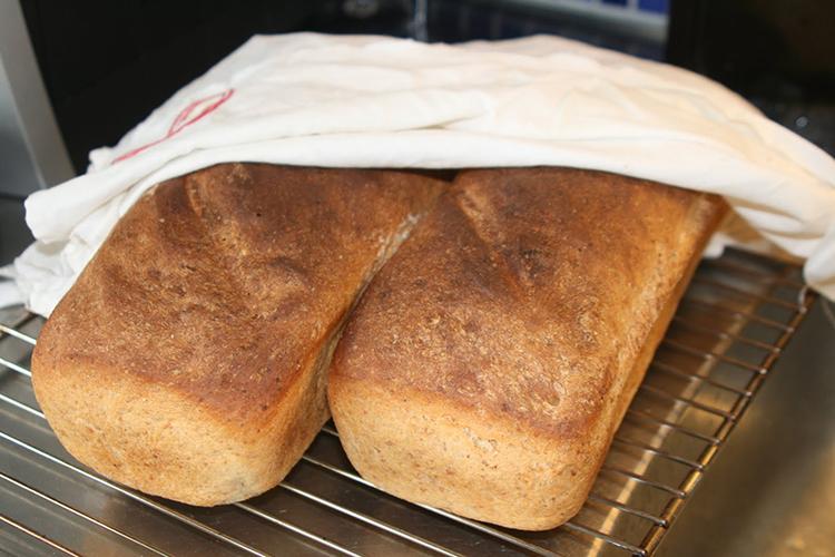 Två bröd på galler med bakduk över