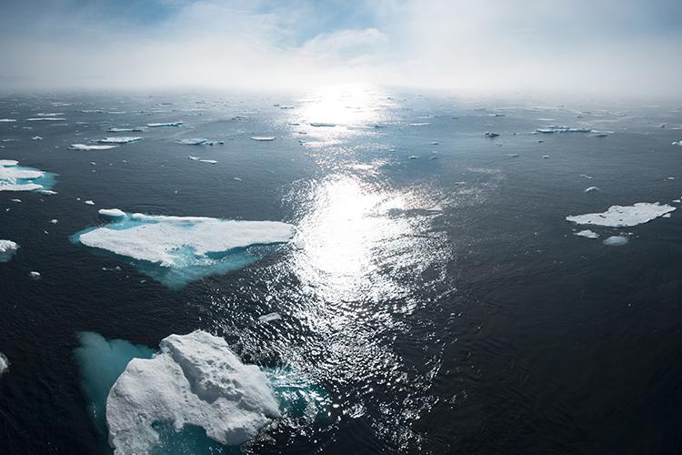 Hav med små isflak, solen står lågt över havet