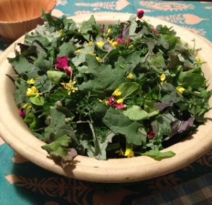 Kale Salad with Rose Petals