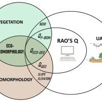 Unmanned aerial systems‐based monitoring of the eco‐geomorphology of coastal dunes through spectral Rao's Q