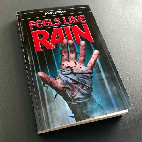 john bergin feels like rain book mecha maiko soundtrack