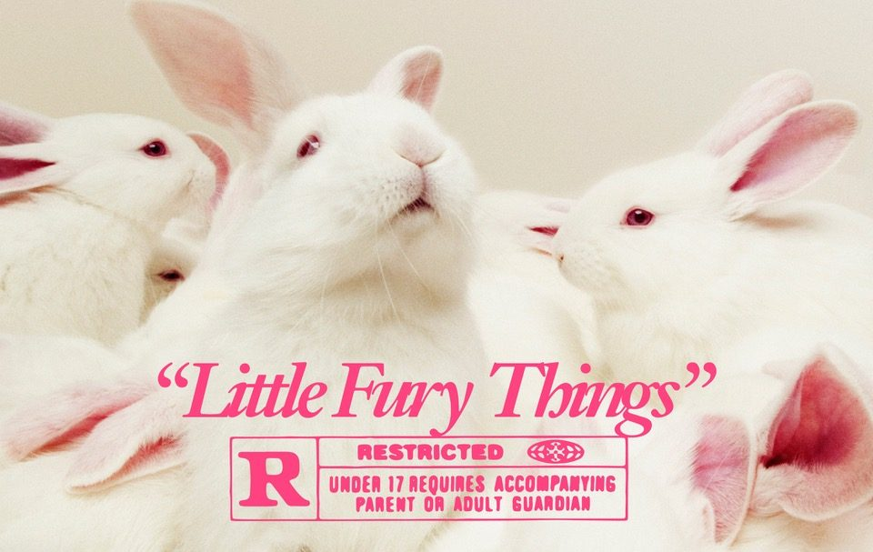 Pink Gloves Little Fury Things Italians Do It Better Dinosaur Jr cover