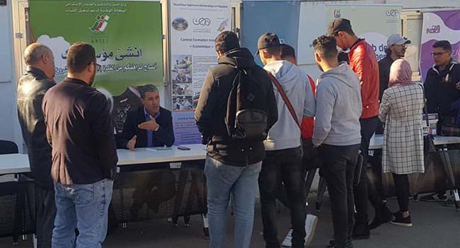 Oran : Encourager les jeunes des zones reculées à créer des startups – IT Mag