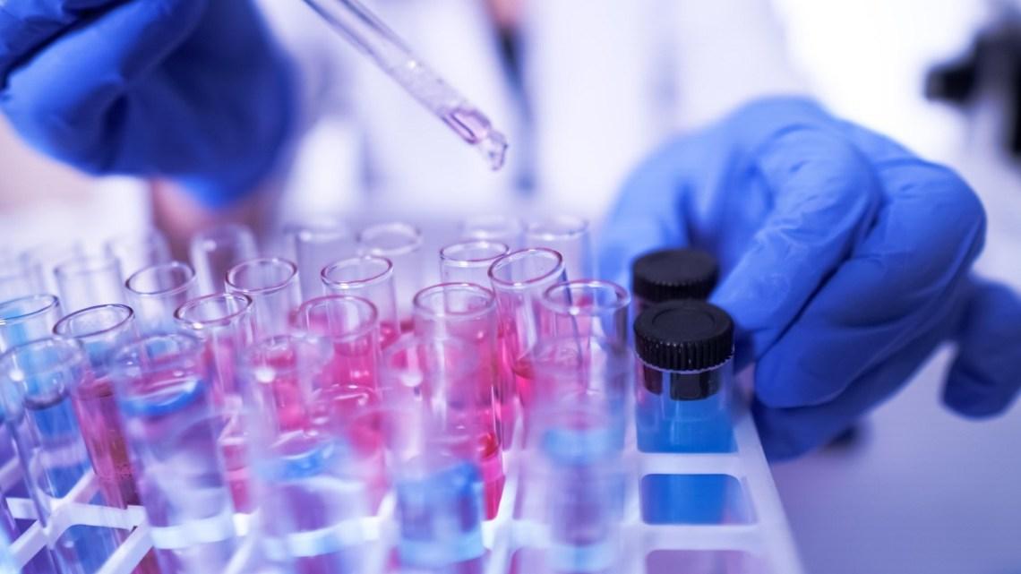 Machine learning : le laboratoire AstraZeneca utilise PyTorch pour découvrir de nouveaux médicaments – ZDNet France