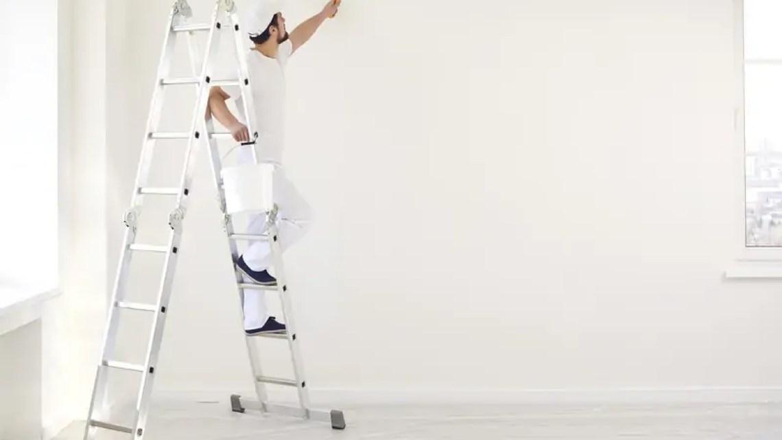 Artisans peintres : la CAPEB reconduit son partenariat RSE avec PPG et l'IRIS-ST – Batiweb.com