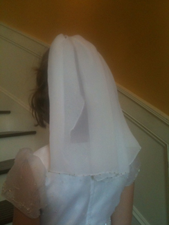 Beaded communion veil
