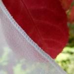 Pencil edge silk chiffon veil